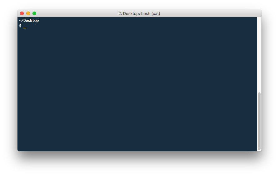 A terminal prompt with a new line